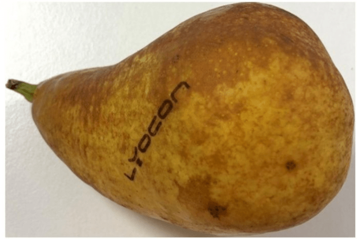 Natural branding of fresh fruit and vegetables using Raylase's blue laser Photo Raylase